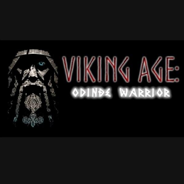 Viking Age Odin's Warrior