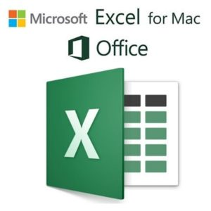 Microsoft Excel for Mac 16.42