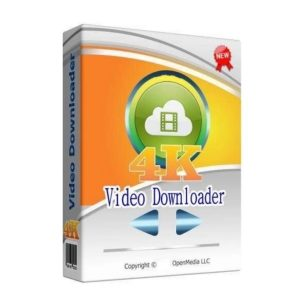 4K Video Downloader 4.13.5.3950